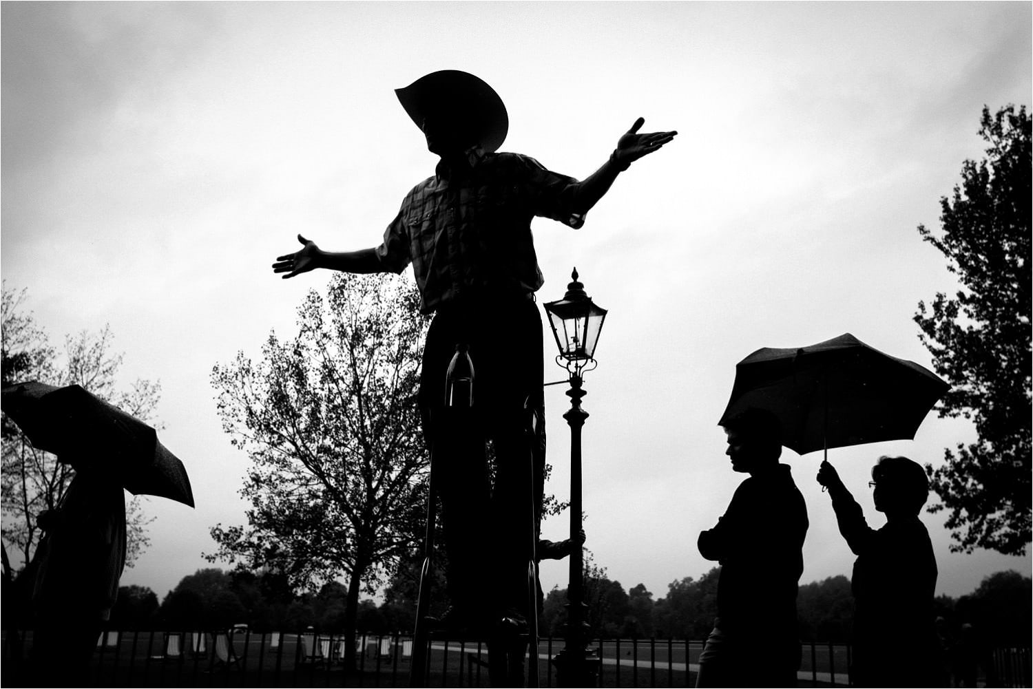 Cowboy at Speakers Corner