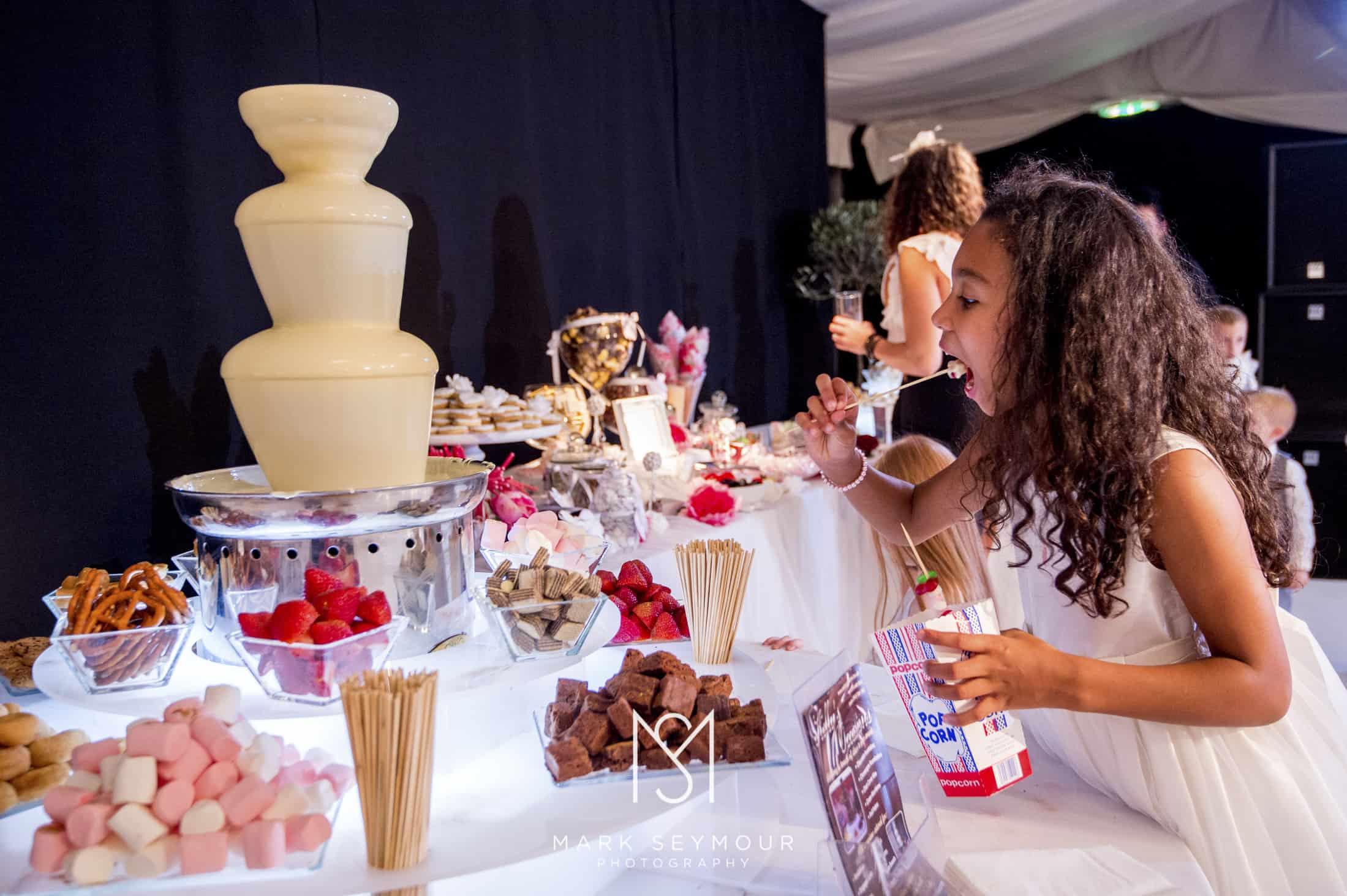 Braxted Park wedding photography 38